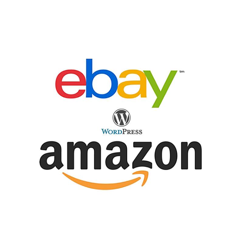 Amazon & eBay Integration